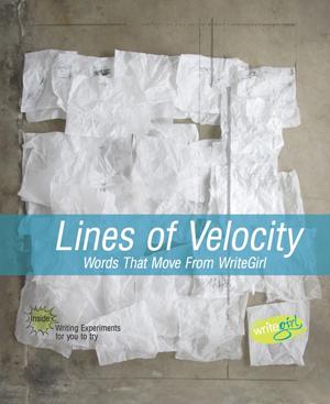 book-lines-of-velocity.jpg