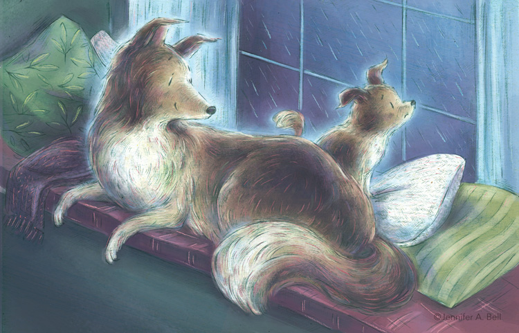 Safe in A Storm by Stephen Swinburne illustrated by Jennifer A. Bell