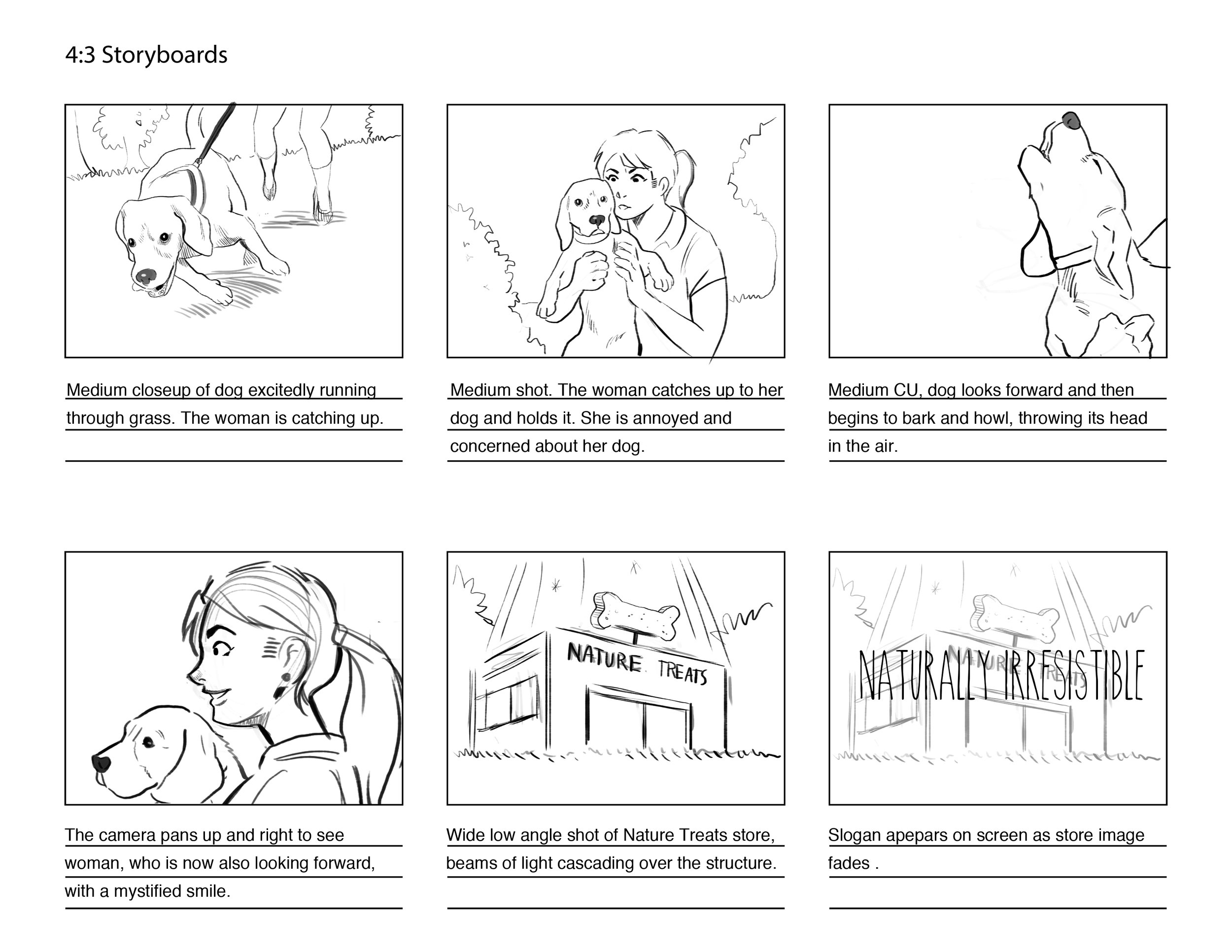 Storyboards for Dog treat commercial pitch.
