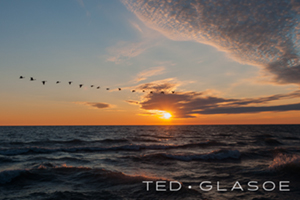 Sunrise_with_Geese-Ted_Glasoe-SM