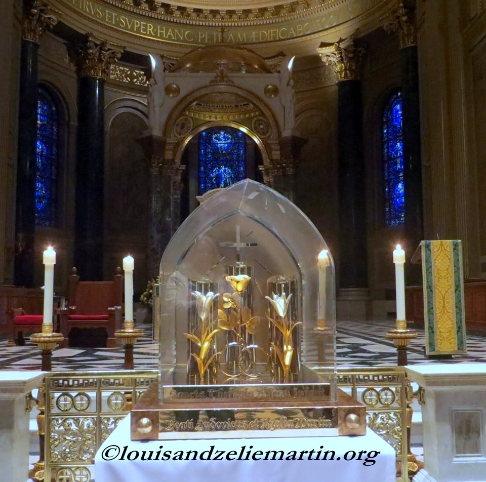 the reliquary of the martin family at the cathedral of saints peter and paul in philadelphia, november 2013 photo credit: BETH O'RIORDAN