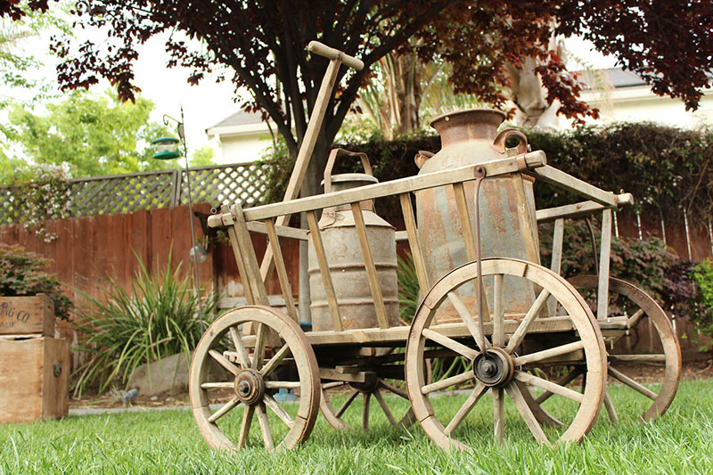 Vintage Goat Cart from Germany