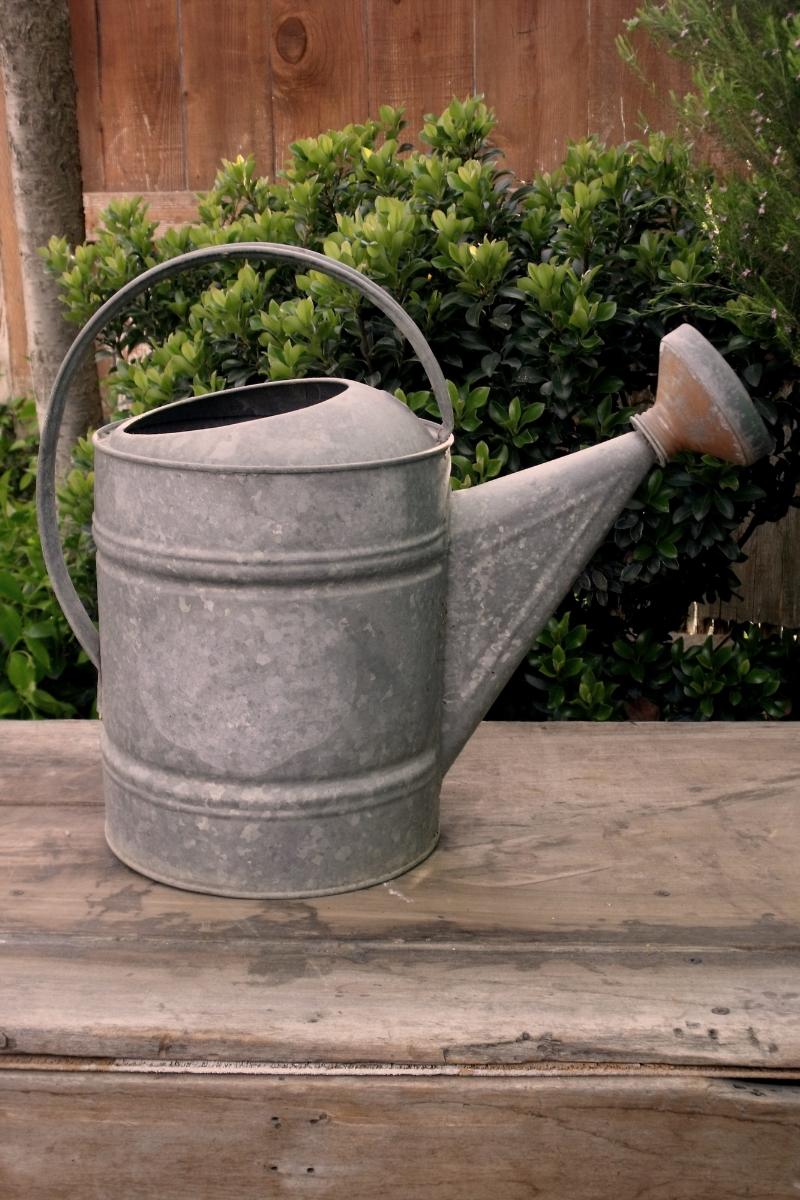 Galvanized Watering Can-02.JPG