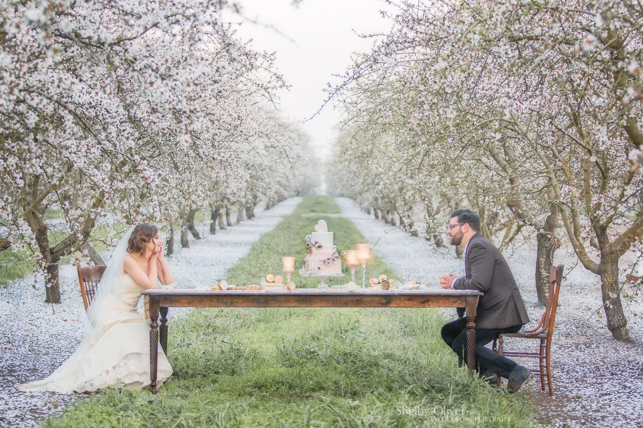 Romantic California Almond Orchard Wedding Farm Table