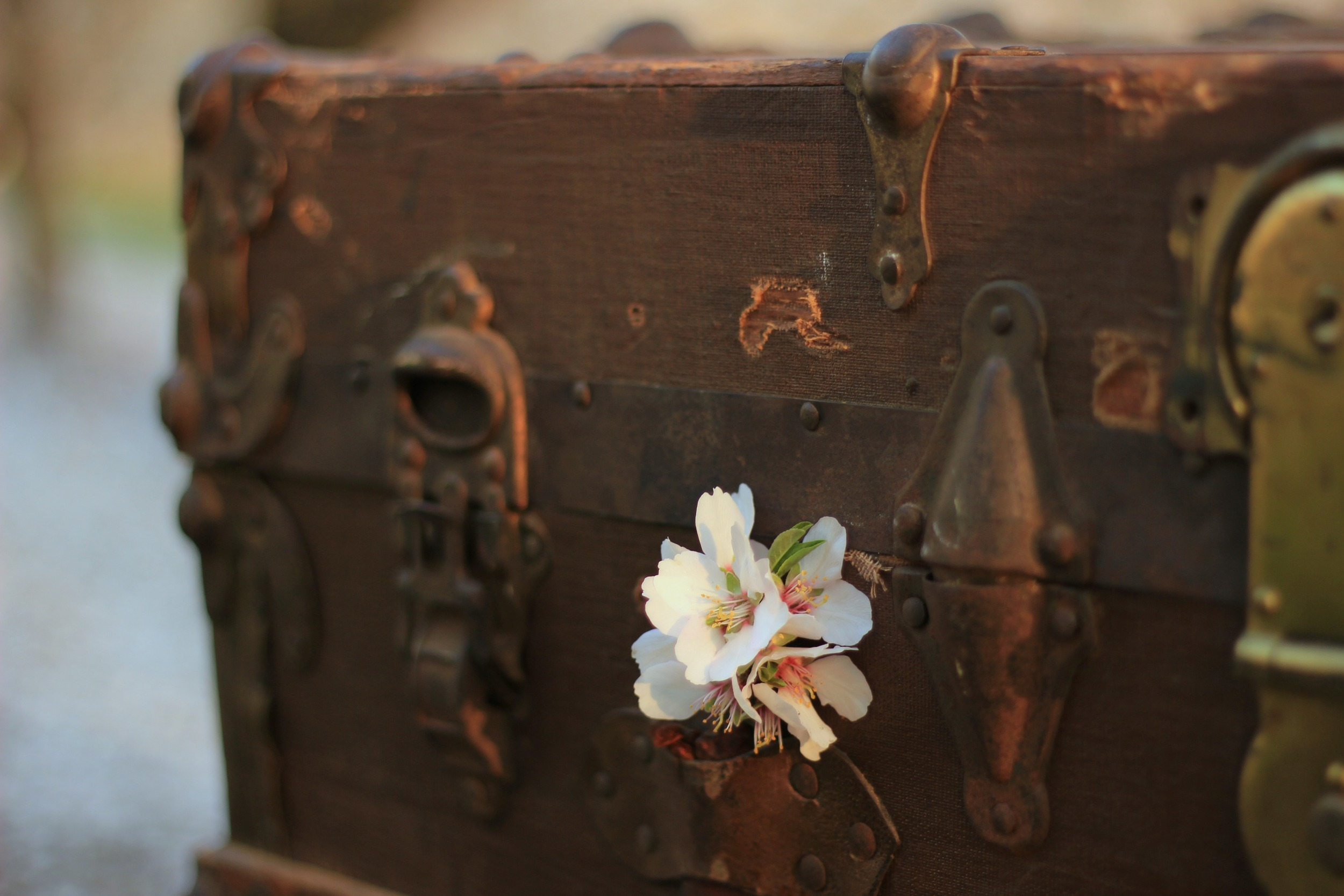 Vintage Wedding trunk ideas