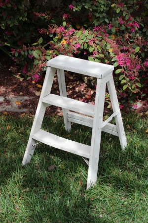 STEP LADDER - DISTRESSED - $10    MORE DETAILS & PICS...
