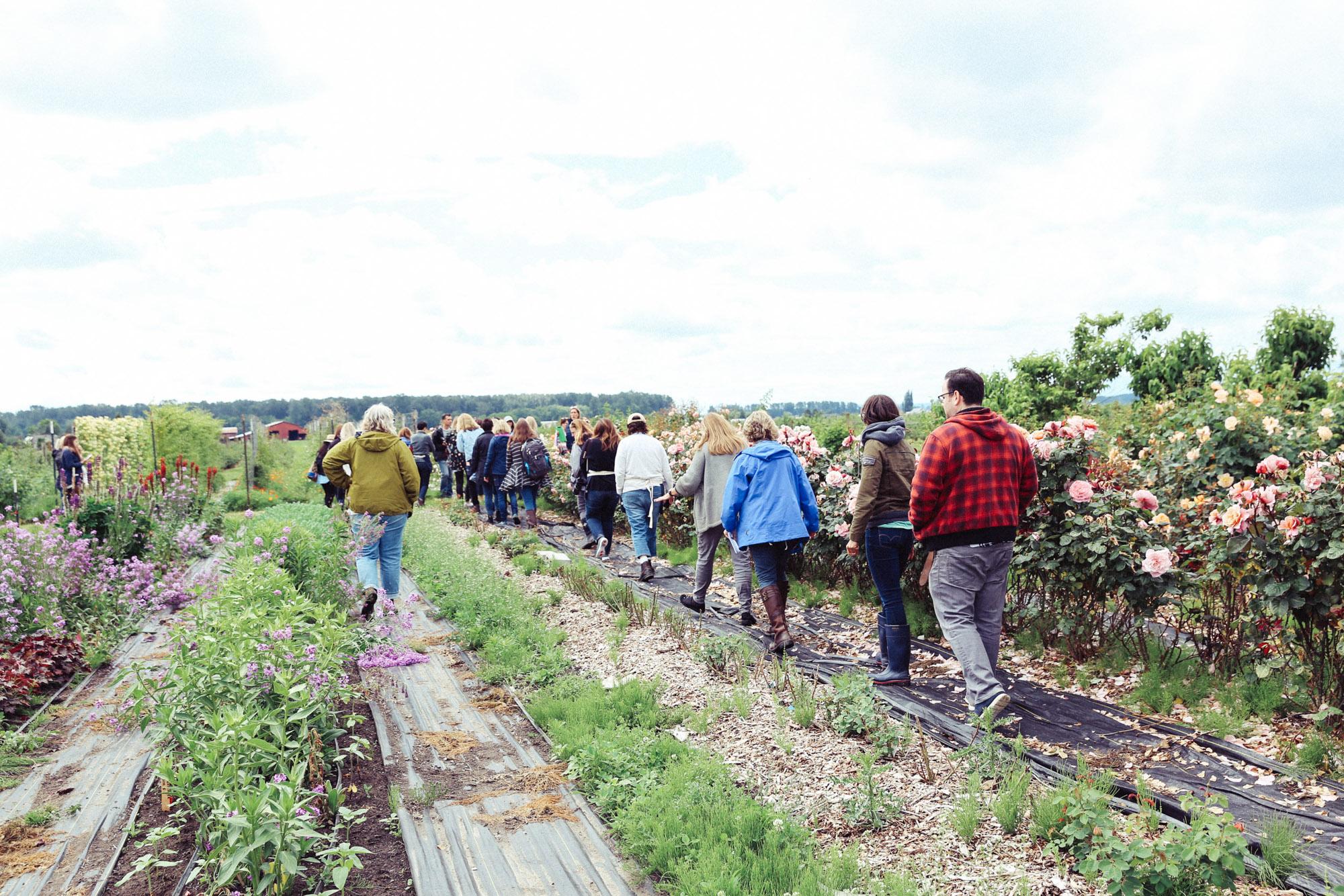 Oh Flora Travels, Floret 2017-10.jpg