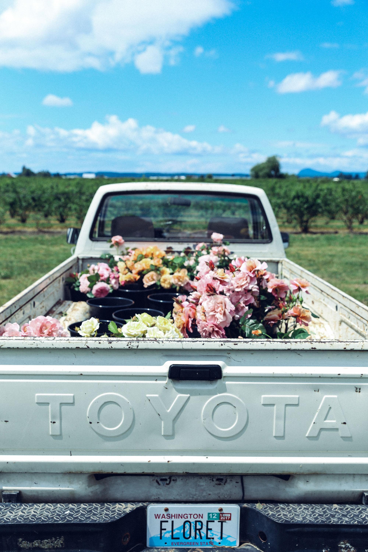 Oh Flora Travels, Floret 2017-39.jpg
