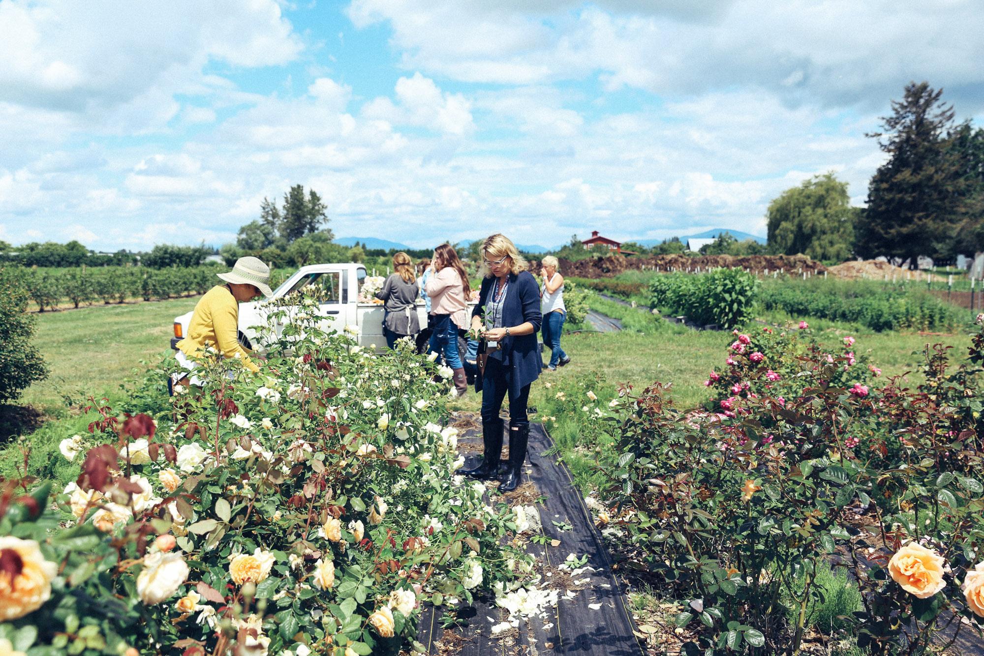 Oh Flora Travels, Floret 2017-46.jpg