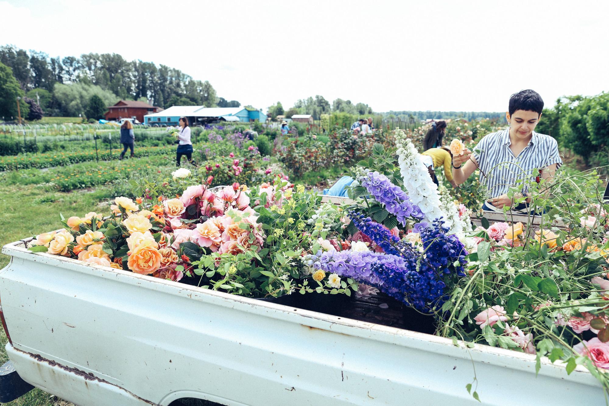 Oh Flora Travels, Floret 2017-55.jpg