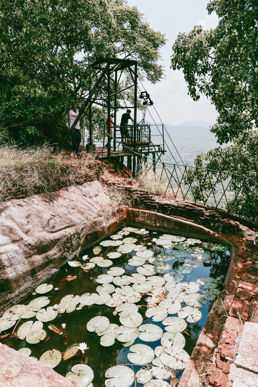 Sri Lanka - Oh Flora Travels-11.jpg