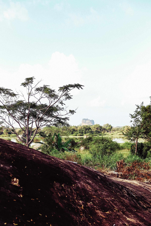 Sri Lanka - Oh Flora Travels-12.jpg
