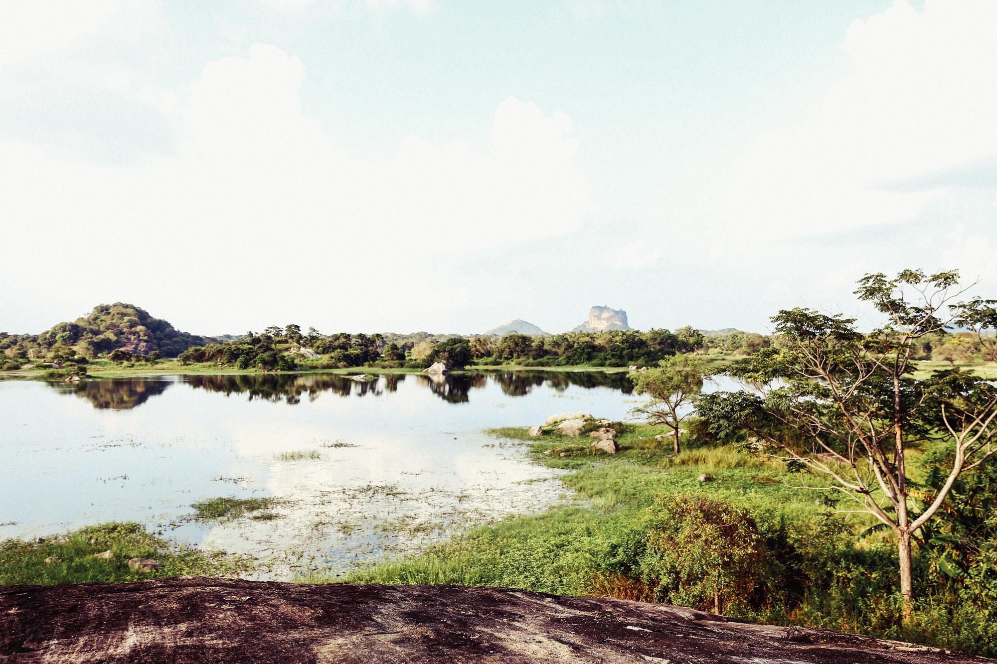 Sri Lanka - Oh Flora Travels-13.jpg