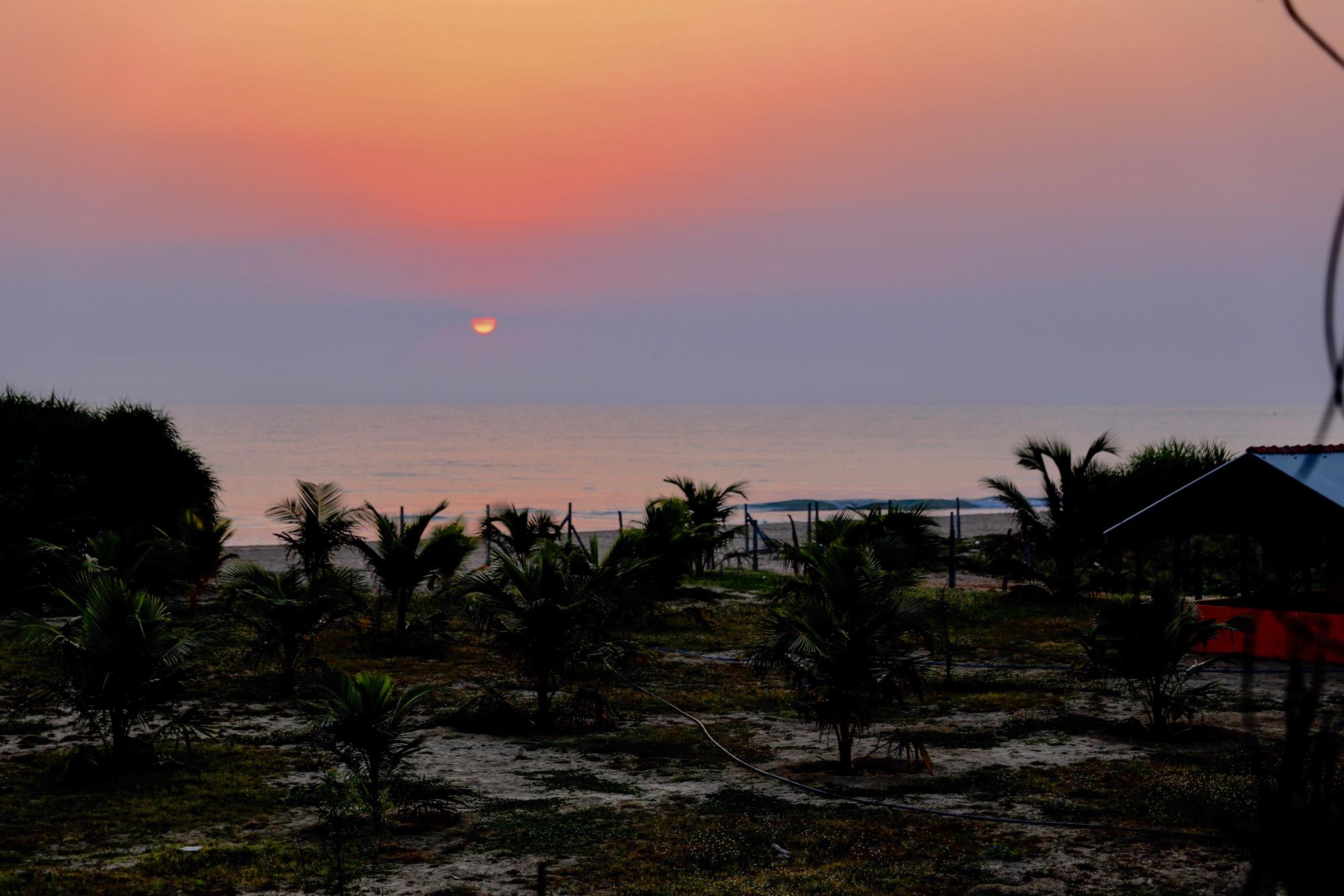Sri Lanka - Oh Flora Travels-22.jpg