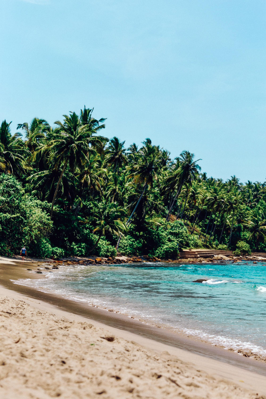 Sri Lanka - Oh Flora Travels-61.jpg