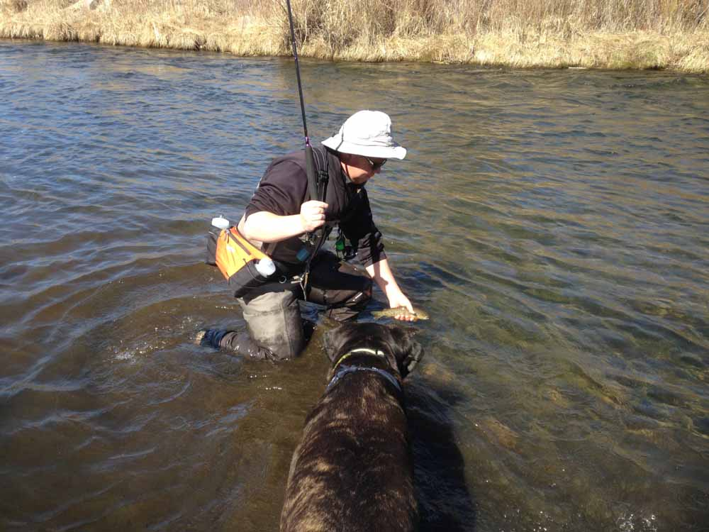 Later I fished with my Oni 13 ft tenkara rod