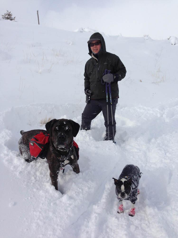 Marley and An Lola snow-1.jpg