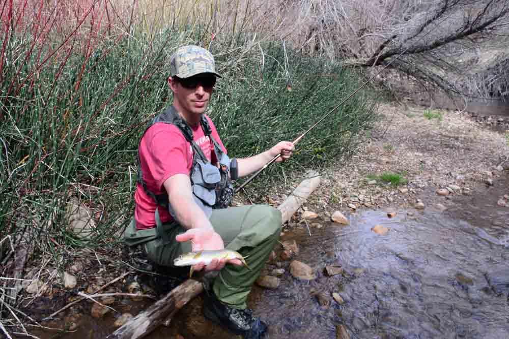 50-50 creek-7.jpg