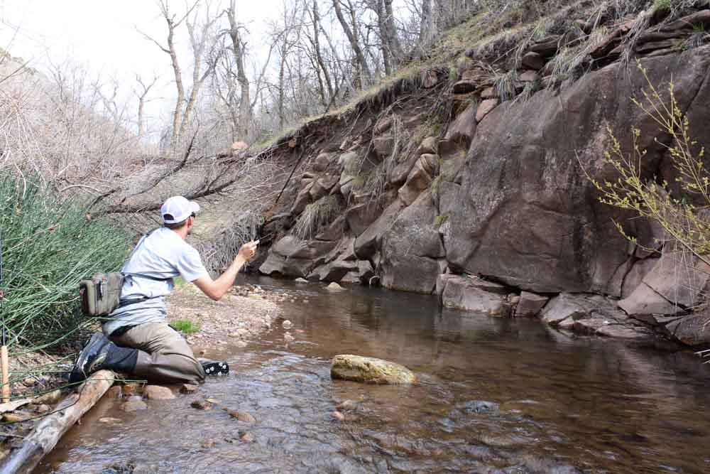 50-50 creek-8.jpg