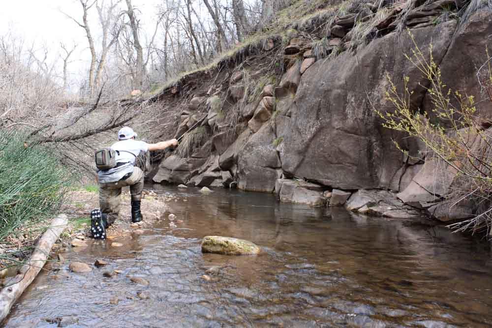 50-50 creek-9.jpg