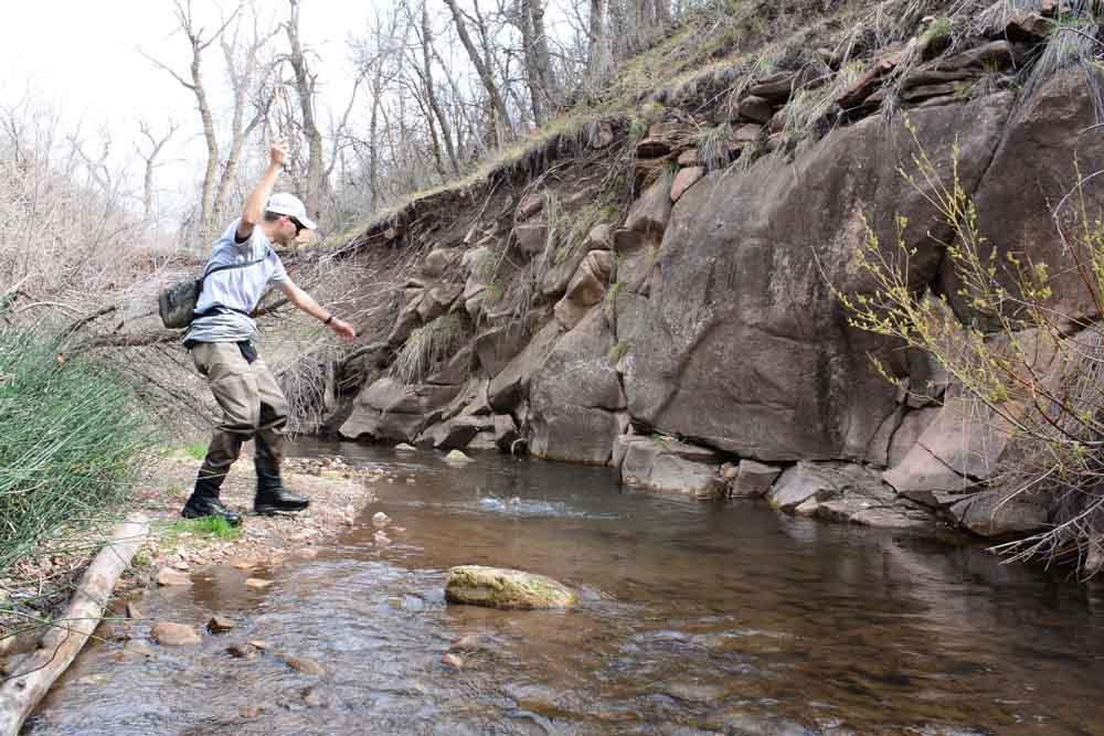 50-50 creek-11.jpg