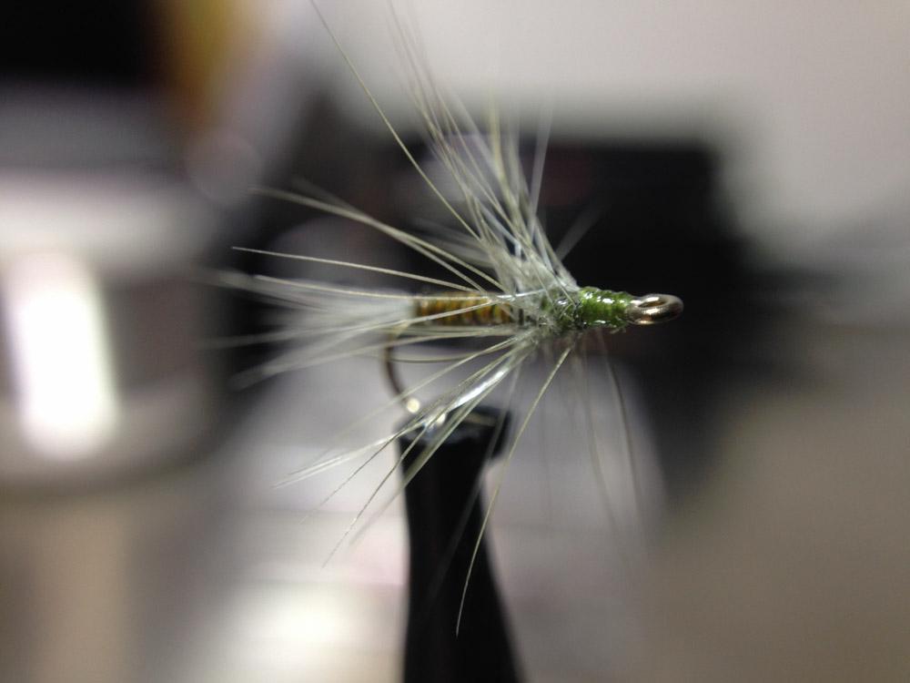 Bud's fly 1-2.jpg