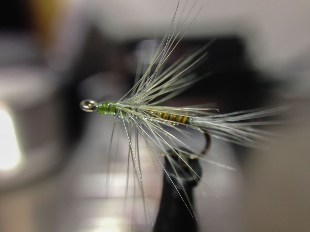 Bud's fly 1-7.jpg