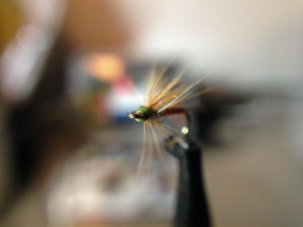 Bud's fly 2-1.jpg