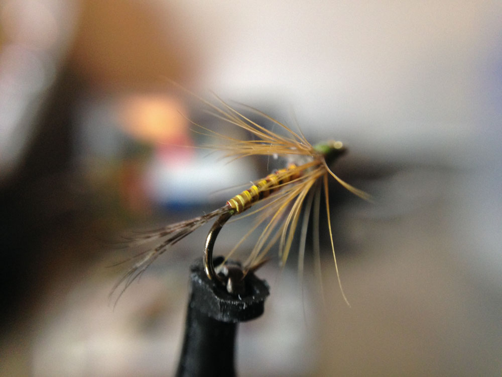 Bud's fly 2-8.jpg