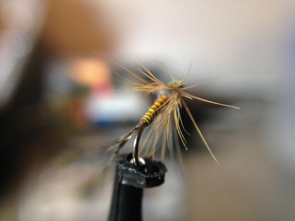 Bud's fly 2-7.jpg