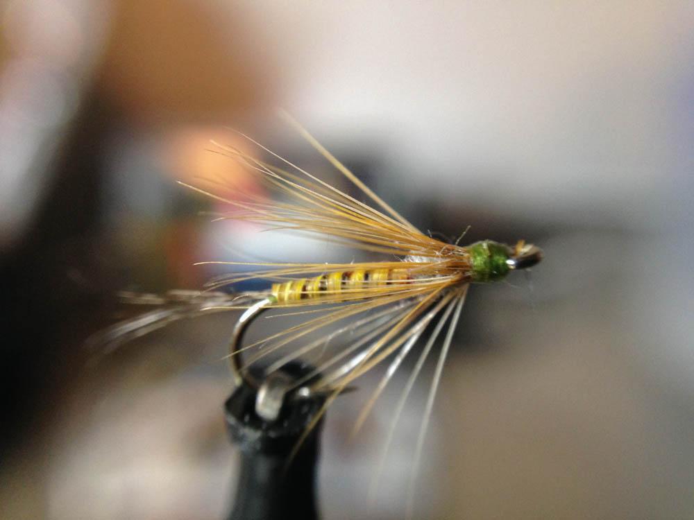 Bud's fly 2-10.jpg