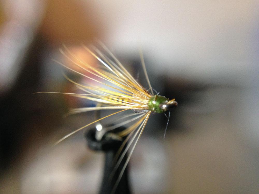 Bud's fly 2-12.jpg
