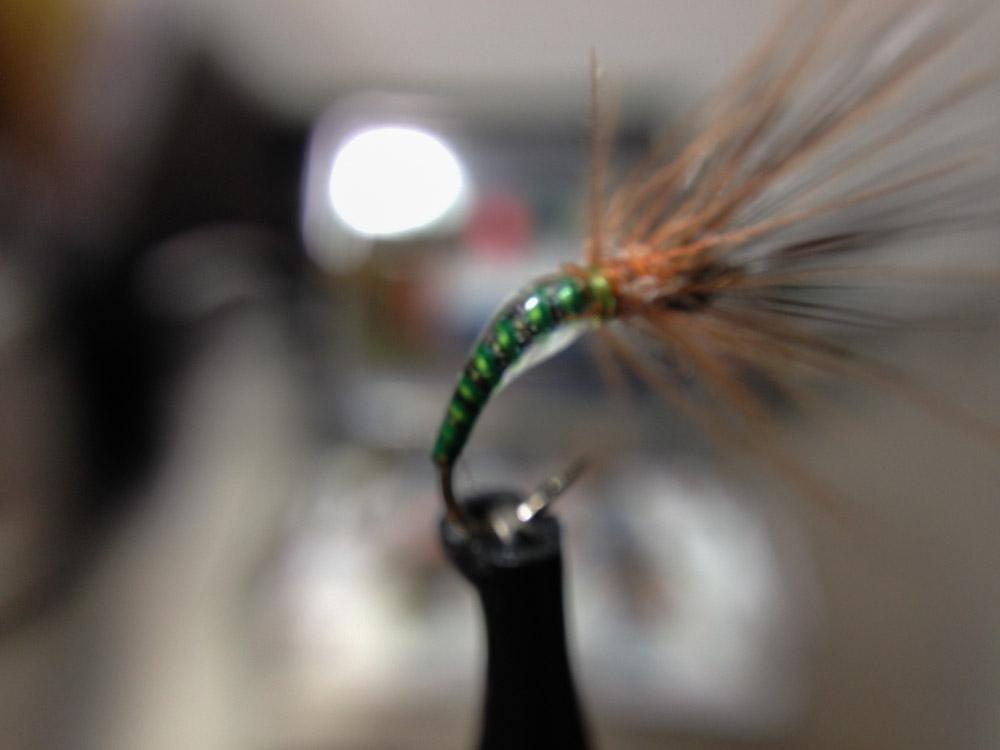 Bud's fly 3-6.jpg