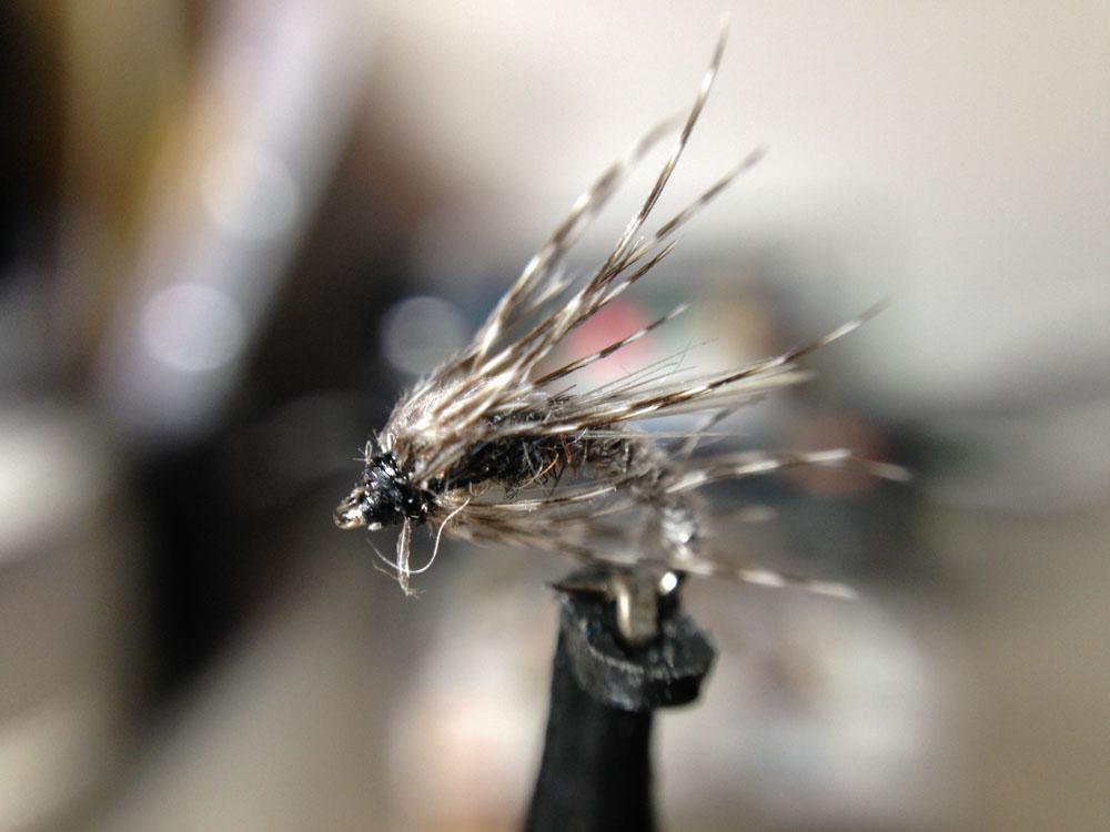 Bud's fly 4-11.jpg