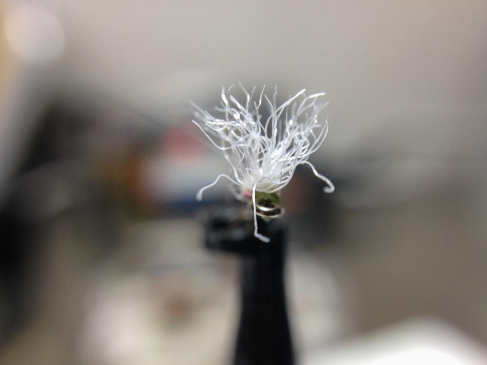 Bud's fly 5-1.jpg
