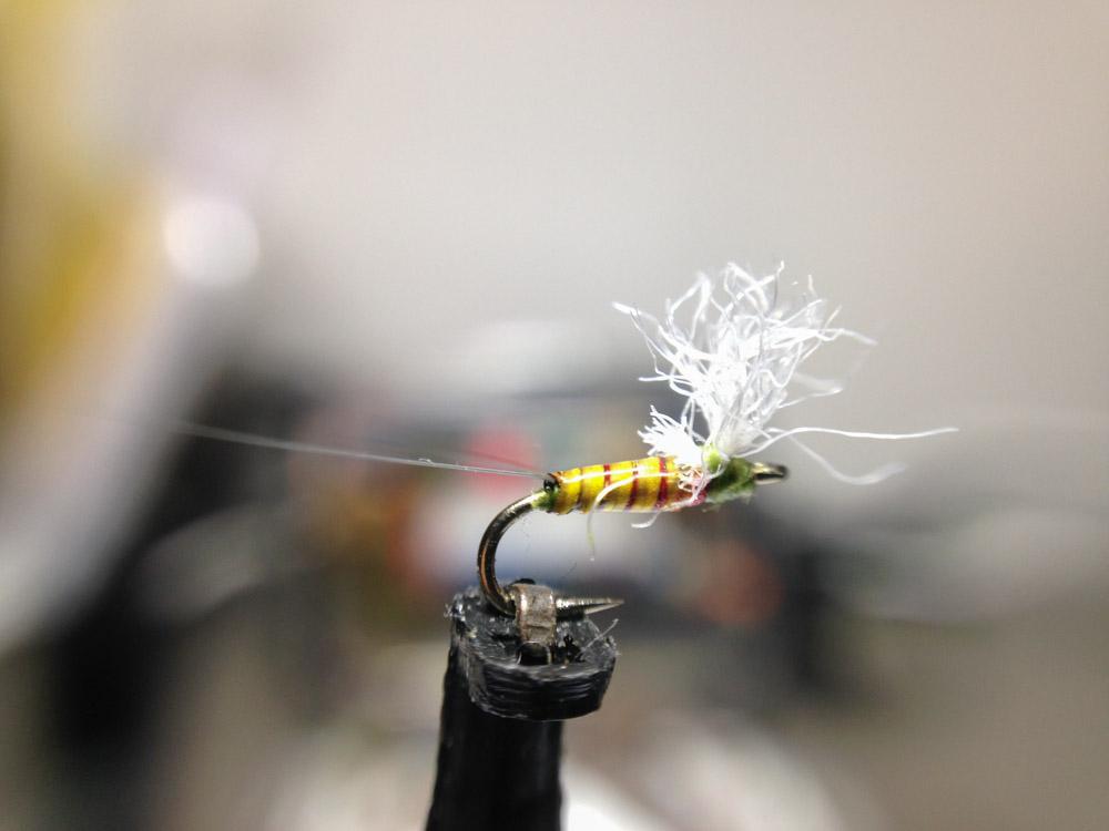Bud's fly 5-8.jpg