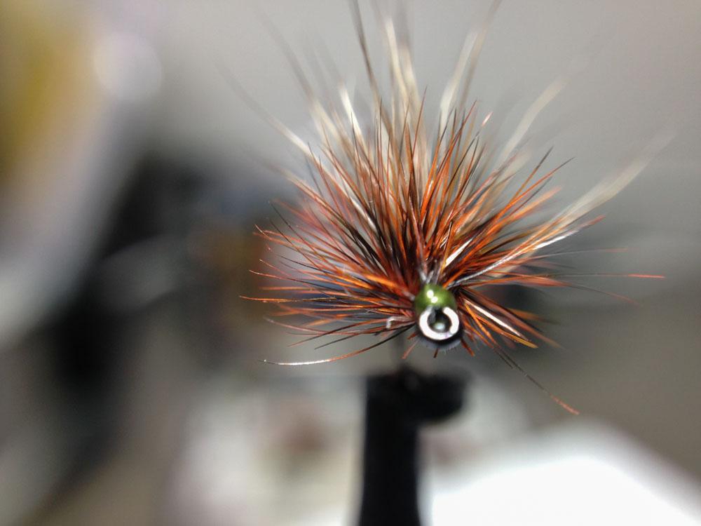 Bud's fly 7-1.jpg