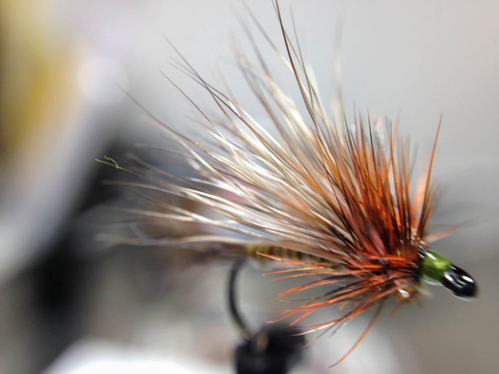 Bud's fly 7-14.jpg