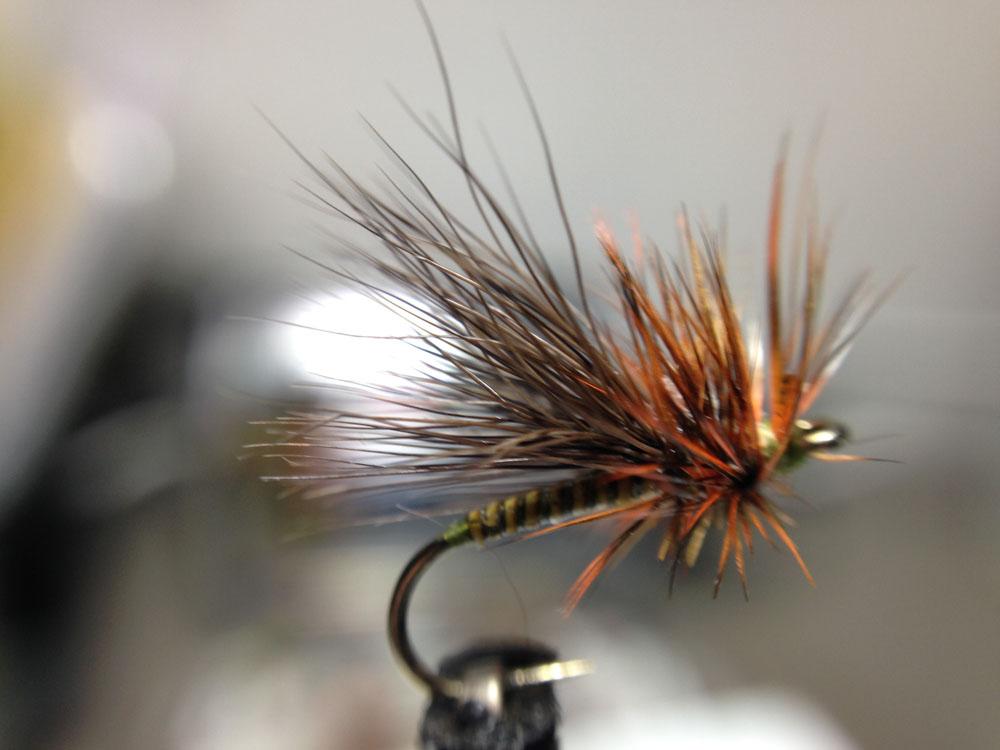 Bud's fly 7-28.jpg