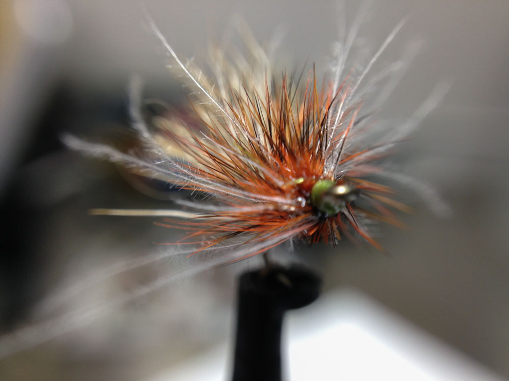 Bud's fly 7-32.jpg