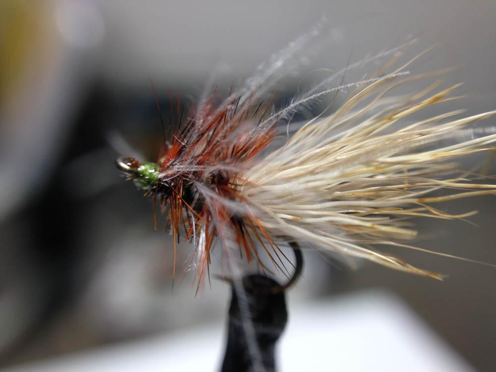 Bud's fly 7-36.jpg