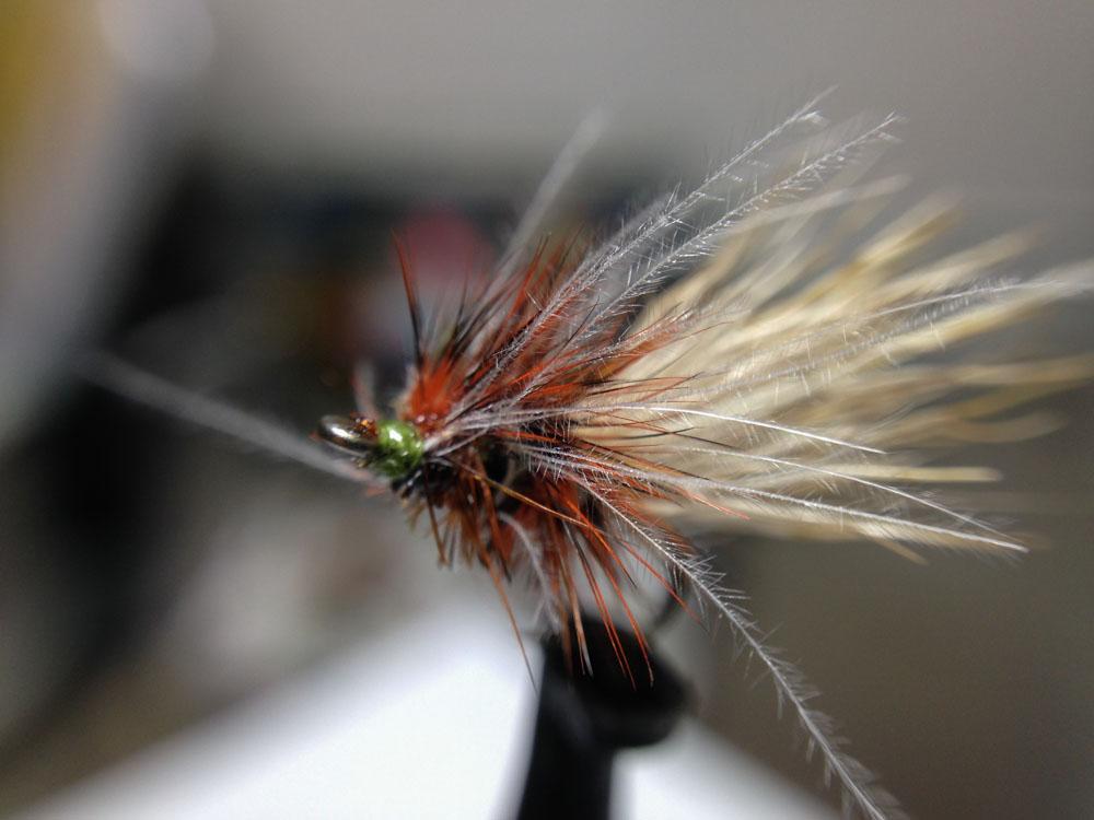 Bud's fly 7-35.jpg