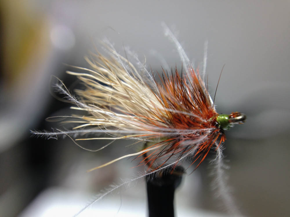 Bud's fly 7-42.jpg