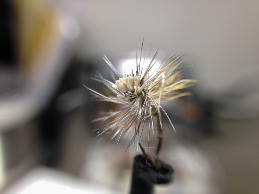 Bud's fly 8-2.jpg