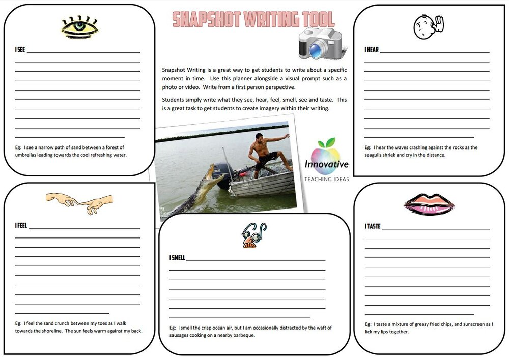 Writing activity for college essays on animals rights