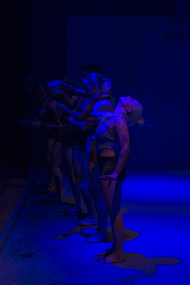 3rd Year Dance Graduation Production, Produced by Adelaide College of the Arts. Photography by Sofia Calado