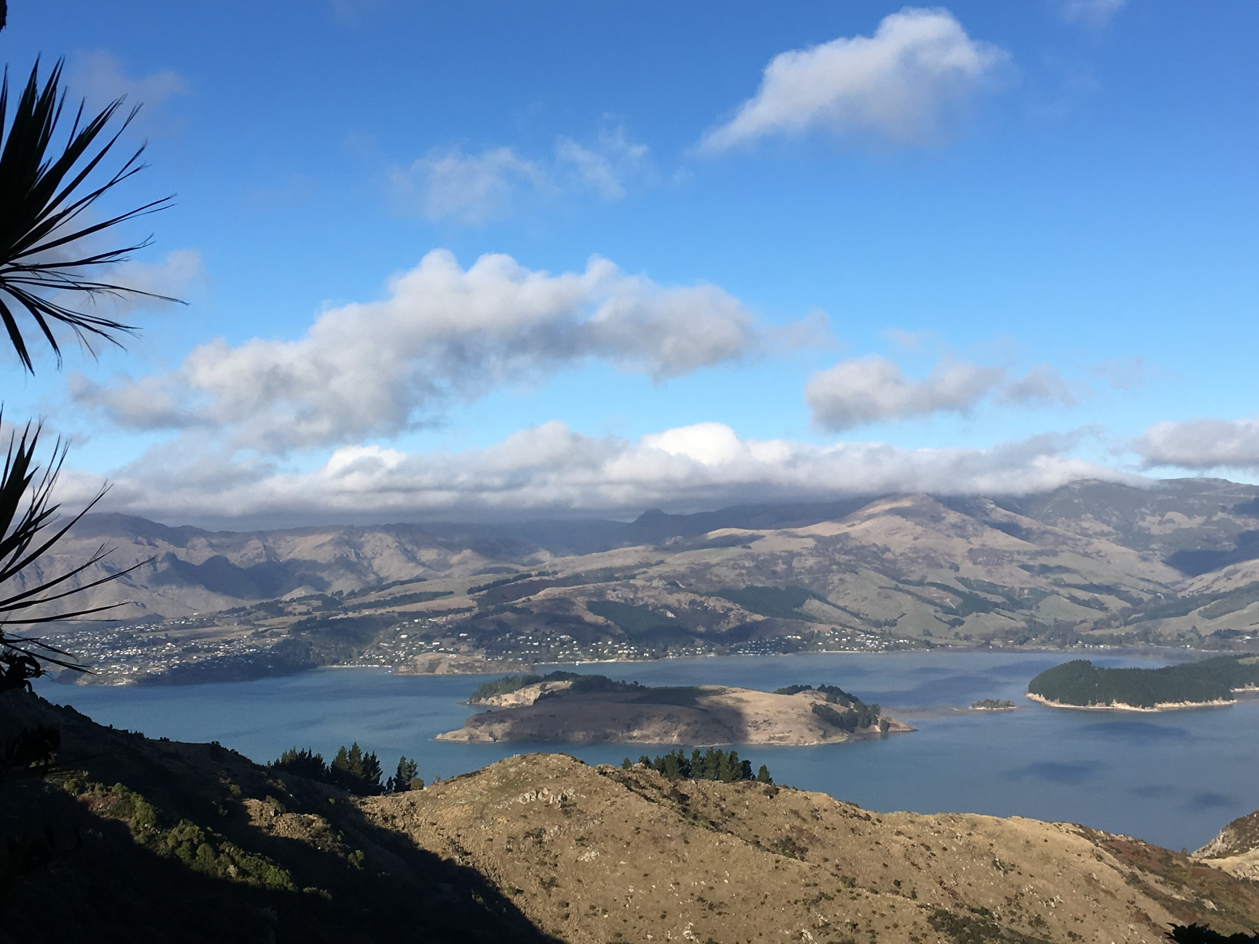 The Port Hills over looking Lyttelton Harbour towards Diamond Harbour in Christchurch photo by Sunstone