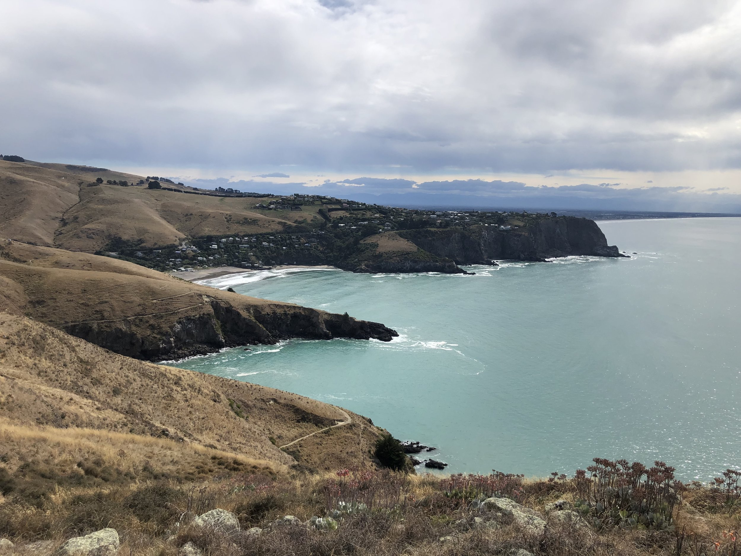 View to Taylor's Mistake beach from Annaconda MTBike track photo by Sunstone