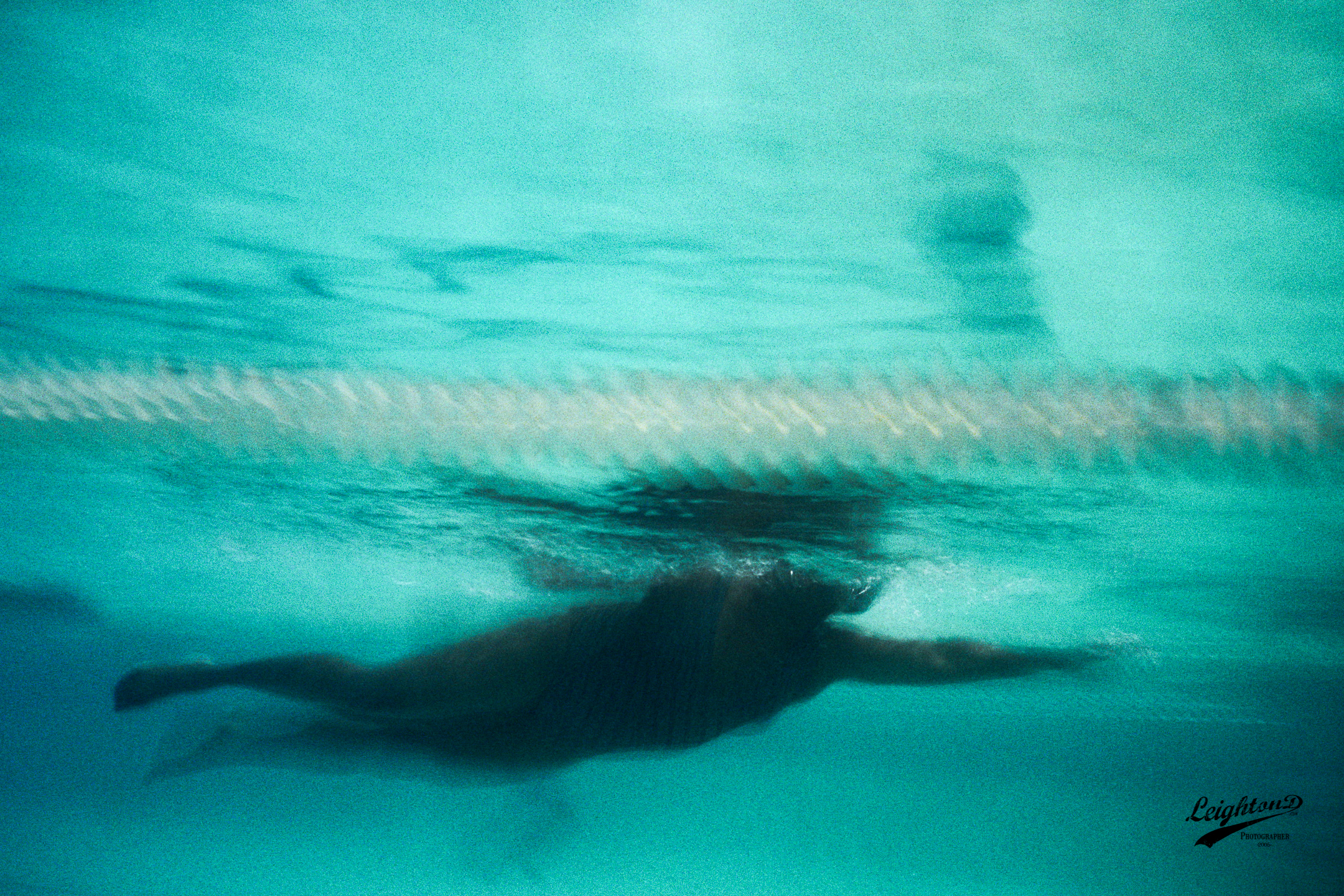 Nikonos V; 28mm; Kodak MAX 400, (assumed) 1/60s - aperture priority of f/8