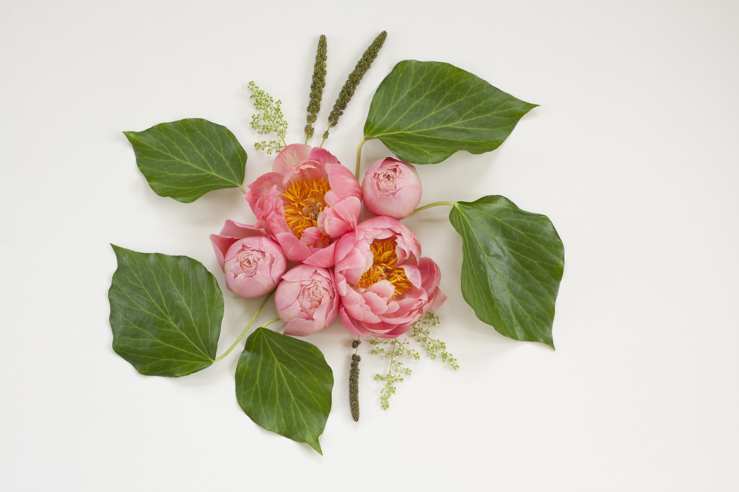 Deconstructed Bouquet